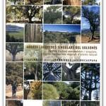 arbres-solsones