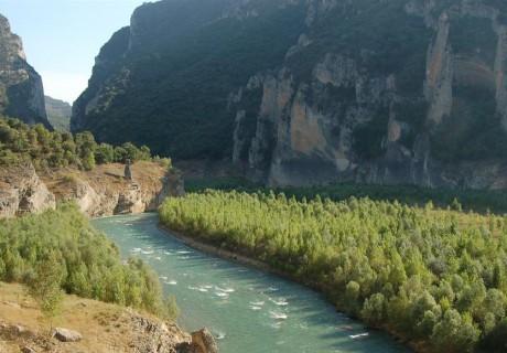 Estudio de Impacto Ambiental del proyecto del Salto de Sant Esteve