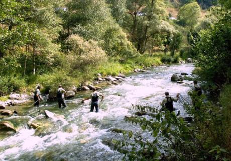 Diagnóstico ambiental de las zonas libres de pesca sin muerte de Cataluña