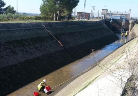 Salvamento de peces en el vaciado de los canales de Balaguer, Térmens y Lleida